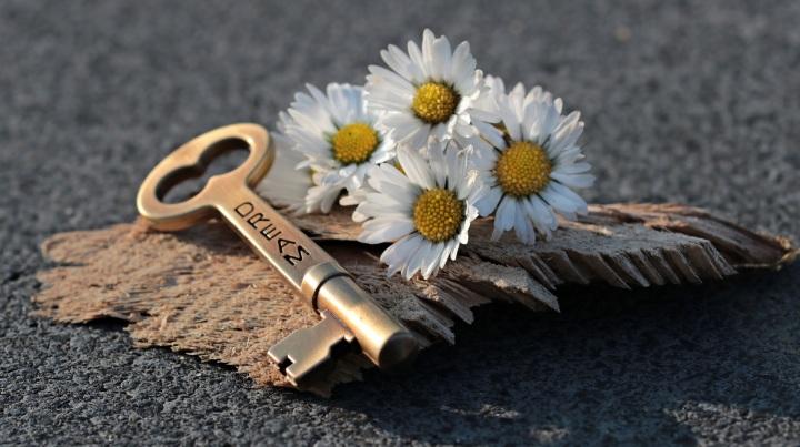 key-3087900